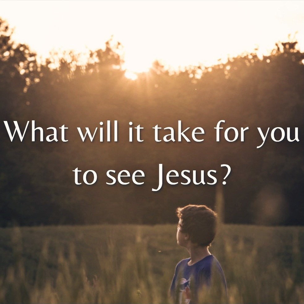 """A boy looks up at the sunset over the trees. A caption reads, """"What will it take for you to see Jesus?"""""""